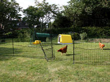 Omlet Chicken Fencing - 21 metres - Inc. Gate and Double Spike Poles
