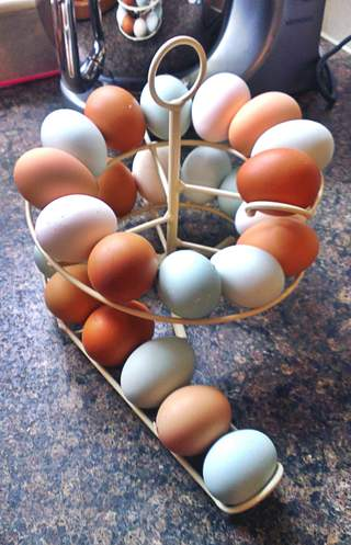 Egg skelter is the perfect way to show off my beautiful eggs whilst keeping them in date order. Love it!!