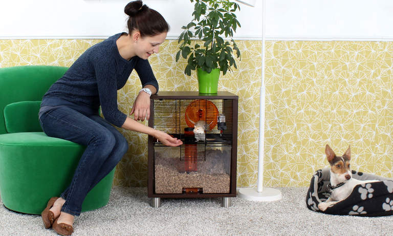 Qute will keep your hamster safe from other pets