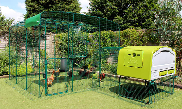 3x3x2 Walk in Chicken Run attached to Eglu Cube Chicken Coop with Run