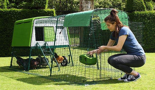 A stable style run door lets you top-up food and drink or let your chickens out to free-range